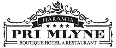 Reference Digital Partner Hotel při Mlýně